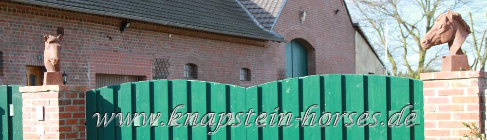 Knapstein Tor